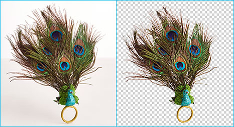 Clipping Path Product Background removal before-after example for peacock-feather makes background transparent.